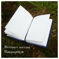 Магический дневник (образец)
